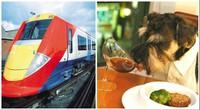 Gatwick Express — самый опаздывающий британский поезд