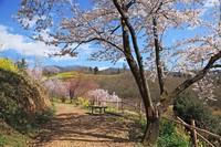 Fukušima kļūst par iekārojamu tūrisma objektu
