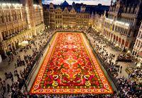 В Брюсселе расстелют традиционный гигантский ковер из цветов